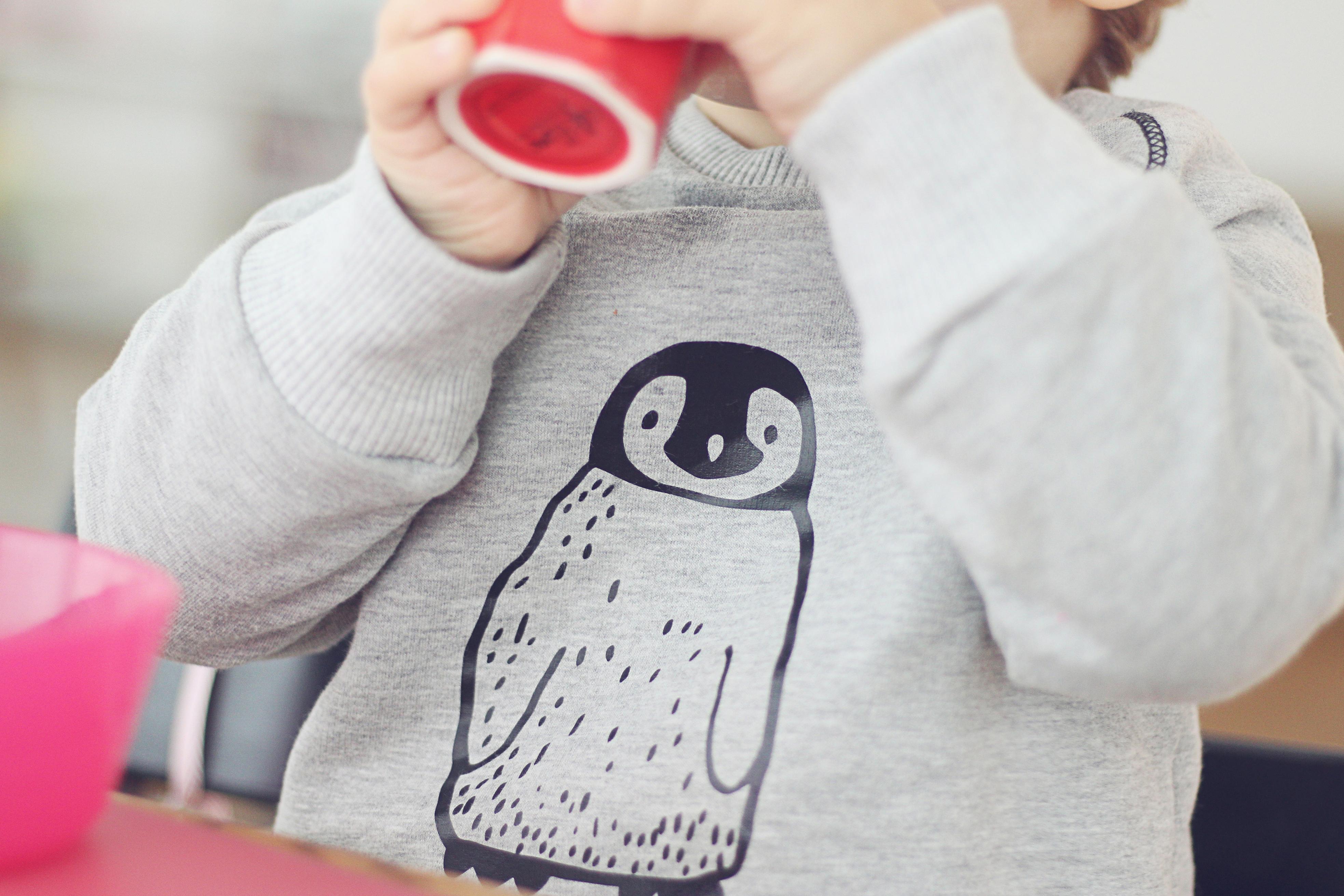 Pinguin-Raglan-Pulli | Ni + Nina